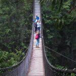 Vancouver - Lynn Canyon Park